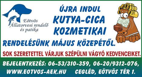 allatorvos-eotvos-79x43-2011-20